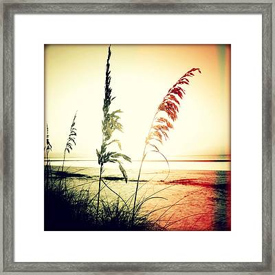 Before Day II Sunset Framed Print by Chris Andruskiewicz