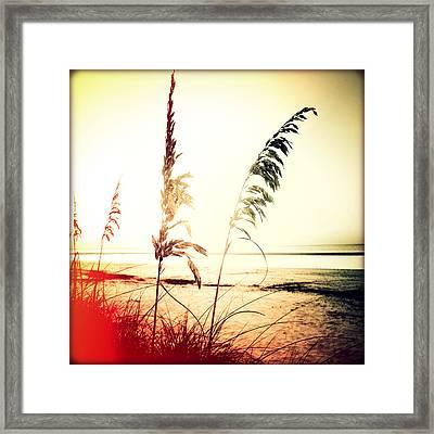 Before Day Sunset Framed Print