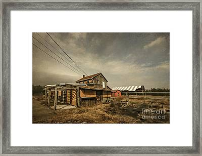 Before It Falls Apart Framed Print by Evelina Kremsdorf