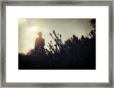 Before Love II Framed Print by Taylan Apukovska