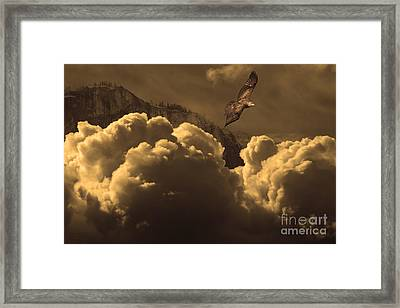 Before Memory . I Have Soared With The Hawk Framed Print by Wingsdomain Art and Photography