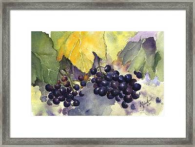 Before The Harvest Framed Print by Maria Hunt