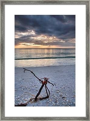 Before The Storm Framed Print by Steven Ainsworth