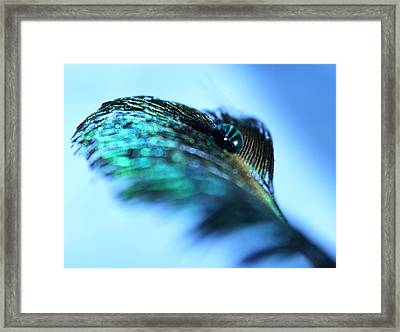 Beginning Again Framed Print by Krissy Katsimbras