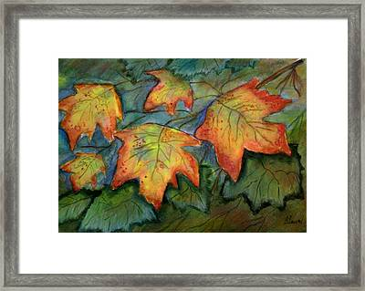 Beginning Fall  Leaves Framed Print by Belinda Lawson