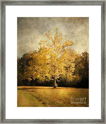 Beginning Of Autumn Framed Print