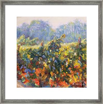 Beginning Of Fall-wine Country Framed Print by Bonnie Seyford