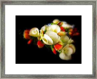 Begonia Framed Print by Jessica Jenney