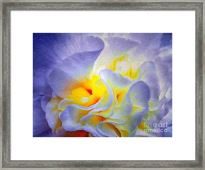 Begonia Shadows II Painting Framed Print