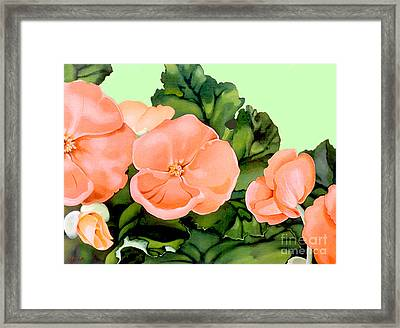 Begonias Framed Print by Patricia Howitt