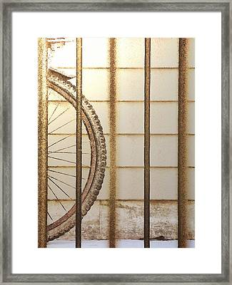 Behind Bars Framed Print by Steve Taylor