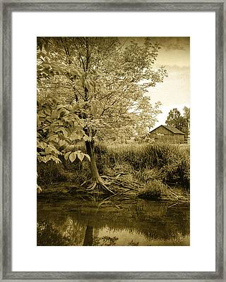 Behind Ed's Barn Framed Print