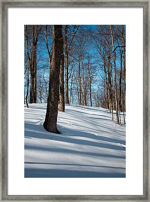 Behind Mccauley Mountain Framed Print by David Patterson