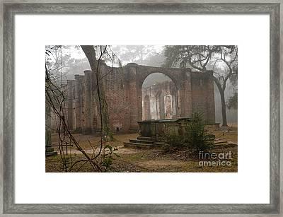 Behind Old Sheldon Church Framed Print