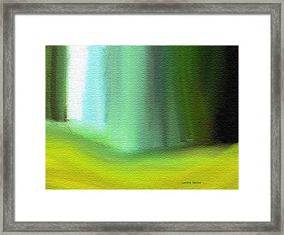 Behind The Curtain Framed Print by Lenore Senior