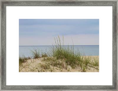 Behind The Dune Grasses 3 Framed Print