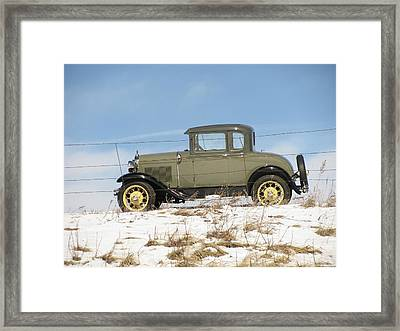 Behind The Fence Framed Print by Steven Parker