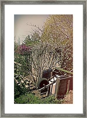 Behind The Garden Framed Print by Tom Gari Gallery-Three-Photography