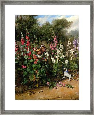 Behind The Hollyhocks Framed Print by Charles Hunt