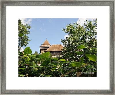 Framed Print featuring the photograph Behind The Leaves by Ramona Matei