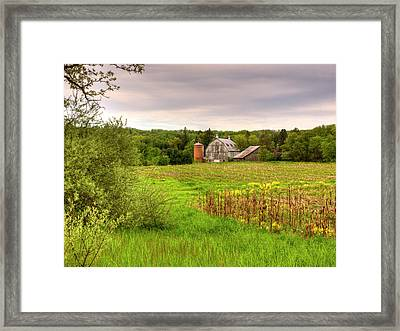 Behind The Rose Barn Framed Print by Thomas Young