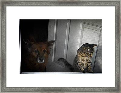 Behind The Screen Door Framed Print by Christy Usilton