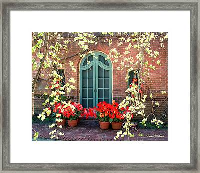 Behind The Tree Framed Print by Haleh Mahbod