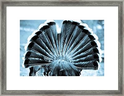 Behind Turkey Framed Print by Syed Aqueel