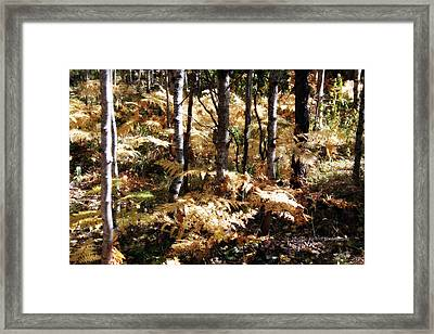 Beige Framed Print by Michele Richter