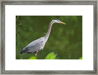 Being Me Framed Print by Juergen Roth