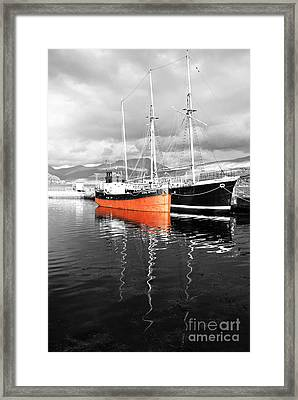Being Selective Framed Print by Wendy Wilton