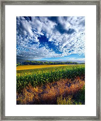 Being There Framed Print by Phil Koch