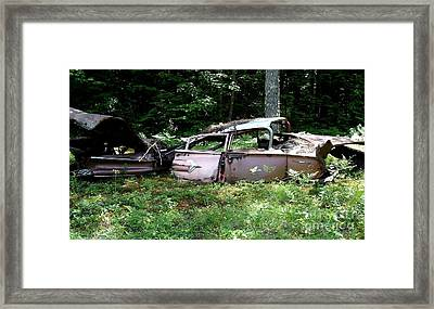 Bel-air Shell Framed Print by Kerri Mortenson