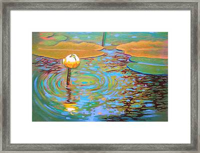 Belchertown Lily Framed Print by Susi Franco