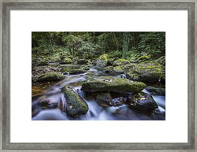 Framed Print featuring the photograph Belelle River Neda Galicia Spain by Pablo Avanzini