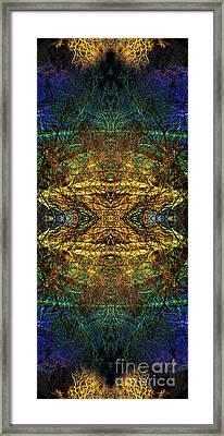 Belenus Framed Print by Tim Gainey