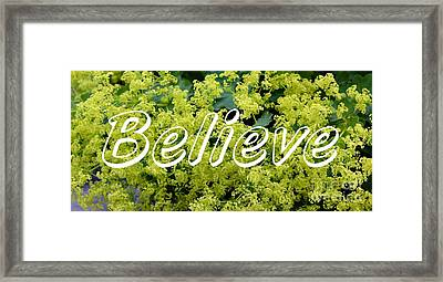 Believe On Ladies Mantle Framed Print