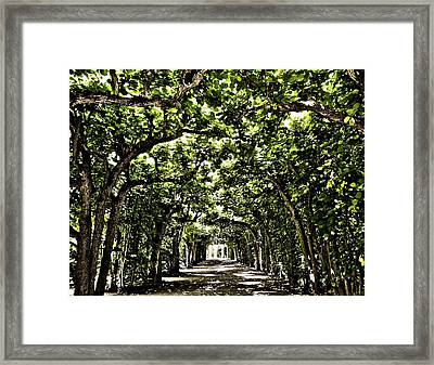 Believes ... Framed Print by Juergen Weiss