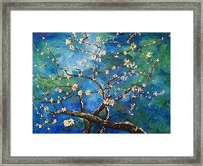 Belinda's Almond Blossoms Framed Print by Belinda Low