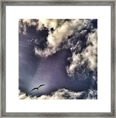 Belizean Skies Over The Caribbean Sea Framed Print by Amy Manley