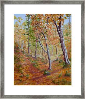 Bella Coola Path Framed Print