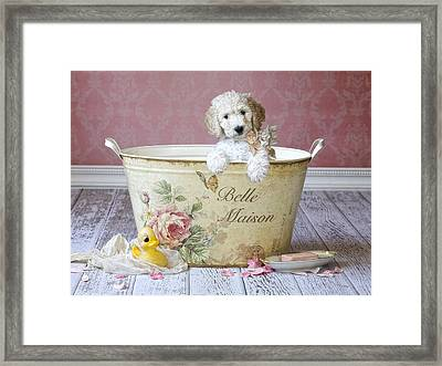 Bella Maison Framed Print by Lisa Jane