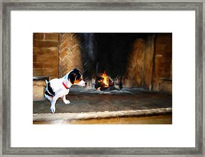 Bella Framed Print by Roger  Booton
