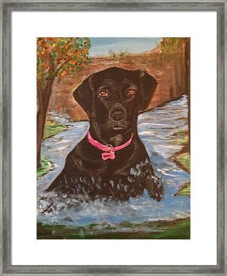 Bella Swimming Framed Print