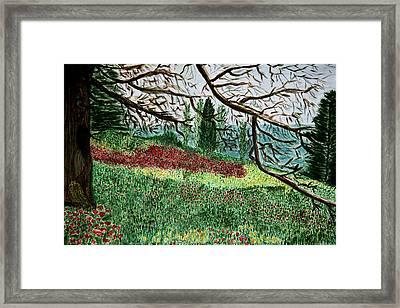 Bella Vista. Framed Print
