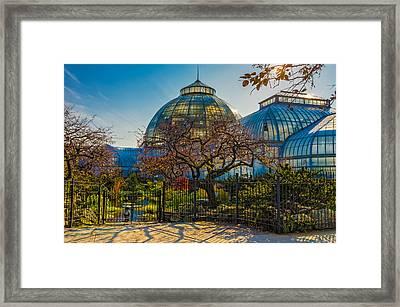 Belle Isle Arboretum Framed Print