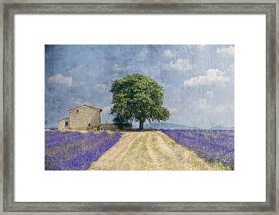 Belle Journee Framed Print by Joachim G Pinkawa