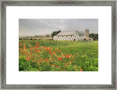 Belleville Morning Framed Print by Lori Deiter