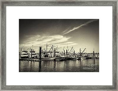 Bellingham Fishing Fleet Framed Print by Arne Hansen