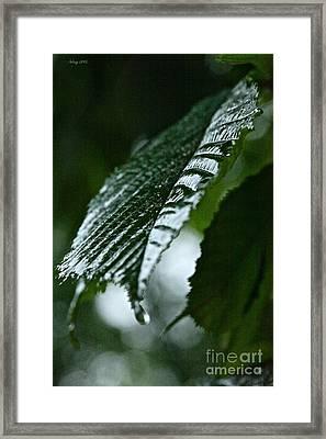 Bellissima Primavera Framed Print by  Andrzej Goszcz
